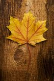 Hoja del otoño sobre vieja tarjeta Fotos de archivo