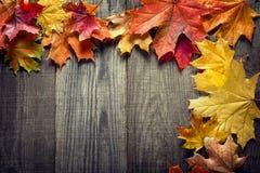 Hoja del otoño en el fondo de madera y x28; view& superior x29; Fotos de archivo