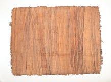 Hoja del papiro Fotografía de archivo libre de regalías