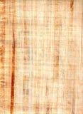 Hoja del papiro. Imágenes de archivo libres de regalías
