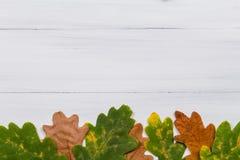 Hoja del roble en el fondo de madera blanco Foto de archivo
