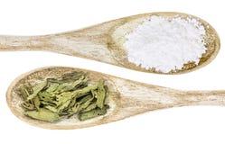 Hoja del Stevia y azúcar de caña blanco Fotos de archivo libres de regalías