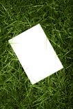 Hoja e hierba foto de archivo libre de regalías