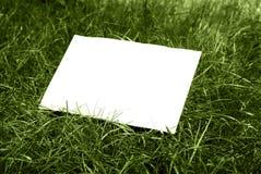 Hoja e hierba imágenes de archivo libres de regalías
