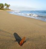 Hoja en arena en la playa Imagenes de archivo