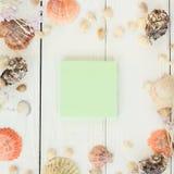 Hoja en blanco y conchas marinas verdes en fondo de madera Fondo del recorrido Fotos de archivo libres de regalías