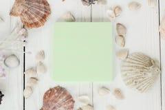 Hoja en blanco y conchas marinas verdes en fondo de madera Fondo del recorrido Foto de archivo