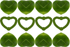 Hoja floral creativa del corazón Imagen de archivo libre de regalías