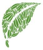 Hoja hecha de hojas verdes múltiples