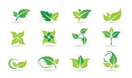 Hoja, logotipo, planta, ecología, gente, salud, verde, hojas, sistema del icono del símbolo de la naturaleza del sistema del icon stock de ilustración