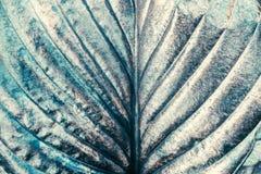 Hoja orgánica verde pintada metal plateado como el papel pintado o contexto creativo abstracto del arte para el diseño, cierre pa fotos de archivo
