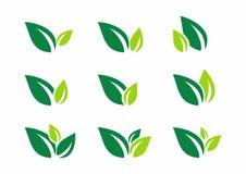 Hoja, planta, logotipo, ecología, salud, verde, hojas, sistema del icono del símbolo de la naturaleza de los diseños del vector stock de ilustración