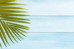 Hoja puesta plana del coco de la foto en la tabla de madera azul, concepto del verano fotografía de archivo