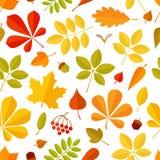 Hoja que cae del otoño inconsútil del modelo aislada en el fondo blanco Imagen de archivo