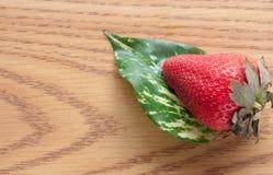 Hoja roja de la fresa Fotos de archivo