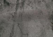 Hoja texturizada negro 1 Fotografía de archivo libre de regalías