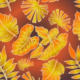 Hoja tropical ilustración del vector