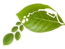 Hoja verde con un combustible cortado II fotos de archivo