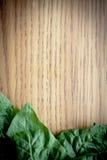 Hoja verde de la espinaca Foto de archivo libre de regalías