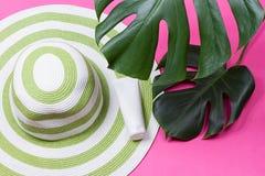 Hoja verde del monstera con las gafas de sol y el sombrero de paja Fotos de archivo libres de regalías