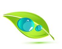 Hoja verde del vector stock de ilustración