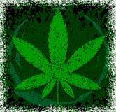 Hoja verde del vector del cáñamo o de la marijuana Diseño del estilo del Grunge para libre illustration