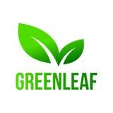 Hoja verde, logotipo de las hojas Fotografía de archivo