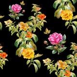 Hoja y flores, modelo inconsútil de la pintura de la acuarela en fondo oscuro Imagen de archivo libre de regalías