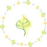 Hojas Árbol Naturaleza Fondo Imágenes de archivo libres de regalías