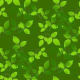 Hojas abstractas del verde que sobreponen en verde verde oliva Imagen de archivo