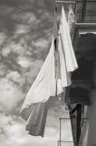 Hojas al viento Fotografía de archivo