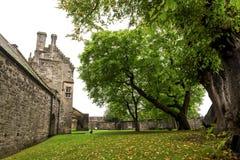 Hojas amarillas caidas en una tierra en una de las yardas dentro de Stirling Castle, Escocia imagen de archivo libre de regalías