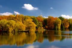 Hojas amarillas y rojas en árboles en el otoño, octubre fotografía de archivo