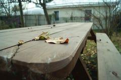 Hojas caidas en la tabla Fotos de archivo