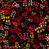 Hojas coloreadas calientes stock de ilustración