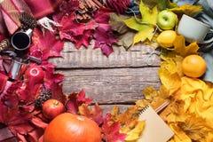 Hojas coloridas de la forma del corazón de la caída de la acción de gracias Fotos de archivo libres de regalías