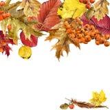 Hojas coloridas del fondo de la acuarela del otoño Foto de archivo