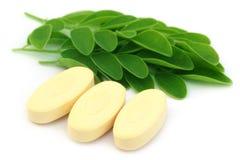 Hojas comestibles de Moringa con las píldoras Fotografía de archivo