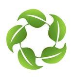 Hojas conectadas con uno a logotipo Imagen de archivo