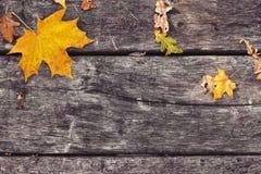 Hojas de arce caidas en la tabla de madera vieja Fondo del otoño Imagenes de archivo