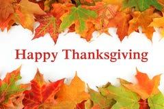 Hojas de arce coloridas del otoño con acción de gracias feliz del texto Fotos de archivo libres de regalías