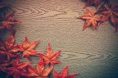hojas de arce en la textura de madera en estilo del vintage foto de archivo