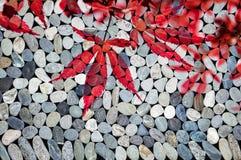 Hojas de arce japonesas rojas, ZENES Stone Foto de archivo libre de regalías