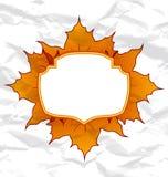 Hojas de arce otoñales, textura de papel arrugada Fotografía de archivo