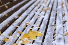 Hojas de arce y nieve en el banco Foto de archivo libre de regalías