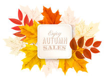 Hojas de Autumn Abstract Banner With Colorful Ilustración del Vector