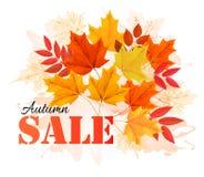 Hojas de Autumn Sales Banner With Colorful Imagen de archivo