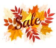 Hojas de Autumn Sales Banner With Colorful Fotografía de archivo libre de regalías