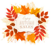 Hojas de Autumn Sales Banner With Colorful Fotos de archivo