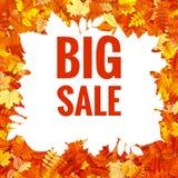 Hojas de Autumn Sales Banner With Colorful EPS 10 Imágenes de archivo libres de regalías
